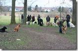 Trainingsauftakt 09.02.2014 (16)
